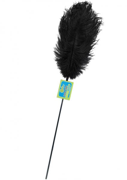 Whip Smart Feather Tickler Mystic Black