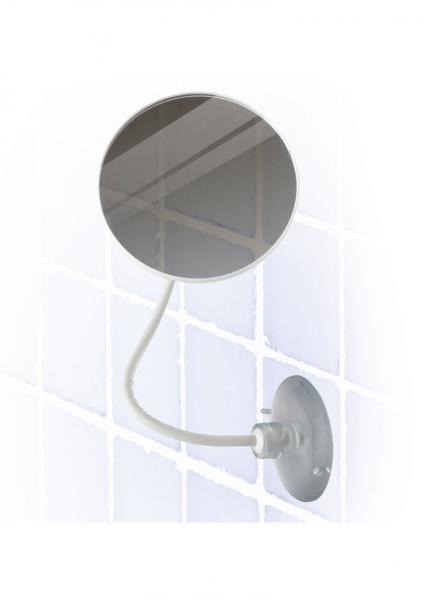 Sex In The Shower Adjustable Fog Free Suction Cup Shaving Mirror