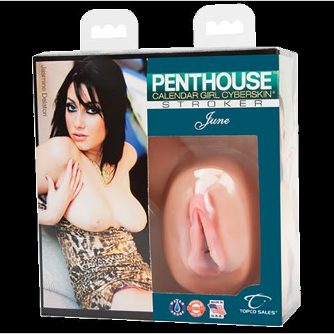 Penthouse Calendar Girl Stroker June Jasmine Delatori