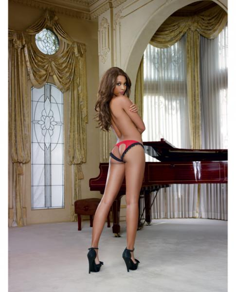 Stretch Mesh Spandex Lace Panty Black/Red L