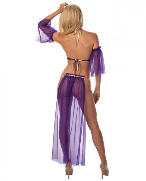 Sexy Belly Dancer Skirt & Panty Purple/Gold O/S