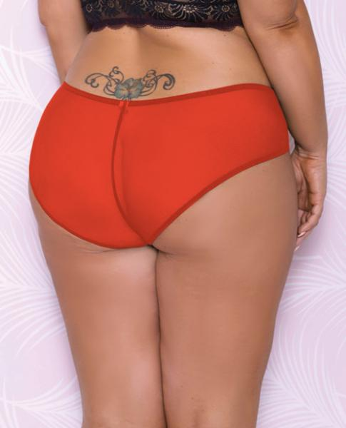 Scallop Lace, Mesh Hipster Panty Red 2X