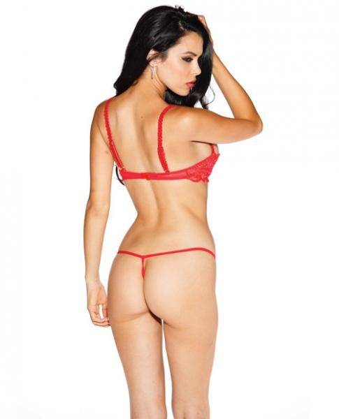 Chopper Bar Shelf Bra Uplifting Cleavage Red 44