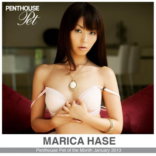 Penthouse Pet Stroker Marica Hase