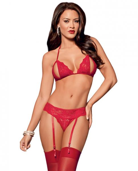 Peek A Boo Bra, Garterbelt, Panty & Thigh Highs Red O/S