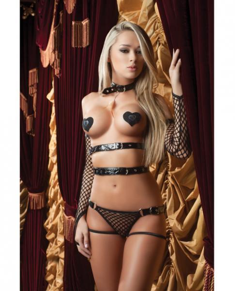 X-Rated Vinyl Teddy, Feather, Gloves & Pasties Blk O/S