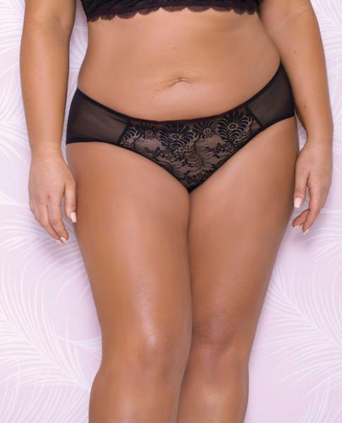 Scallop Lace, Mesh Hipster Panty Black 3X