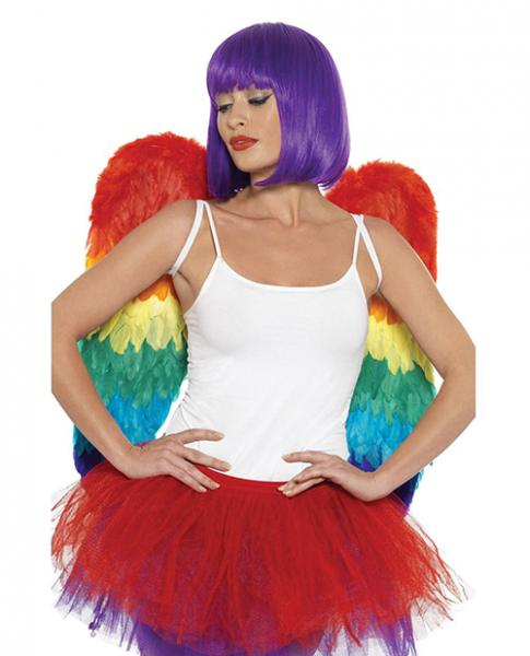 Rainbow Large Feather Wings