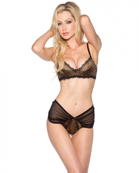 Lace Trim Bra and Sheer Boyshort Leopard Small
