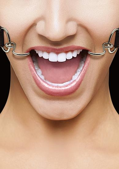 Ouch Hook Gag with Leather Straps Black O/S