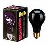 75 watt Blacklite Bulb BL75thmb